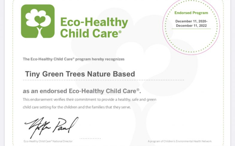 Go Green Rating Scale Certificate